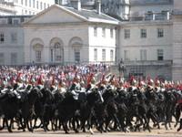 Police_horses