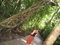 Me_and_tree