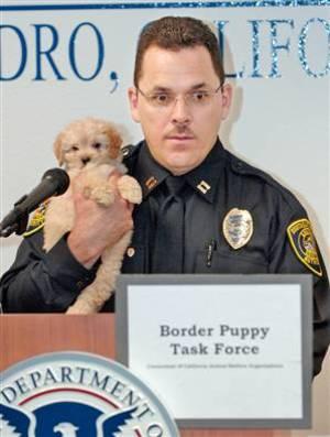 Puppy_cop