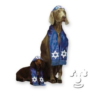 Rabbidog_1